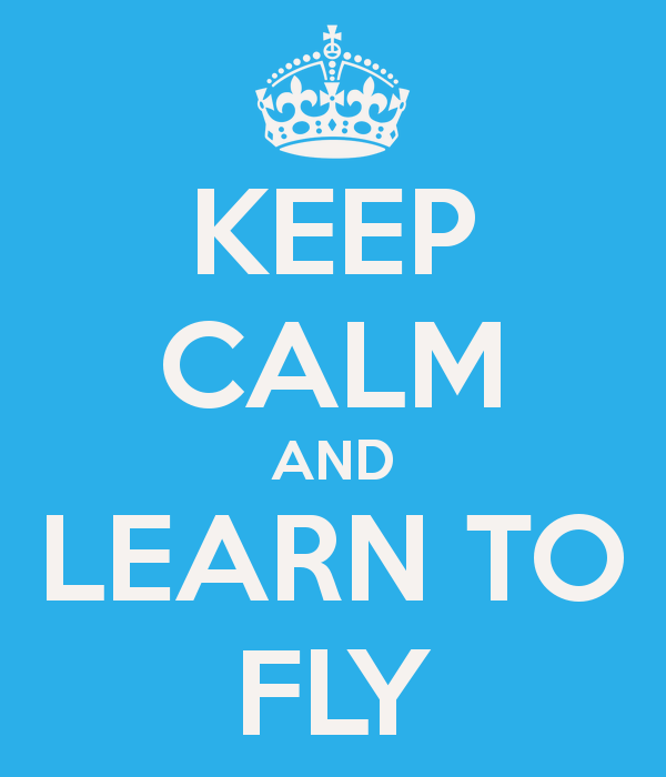 Learn to Fly, or Stay Grounded Forever